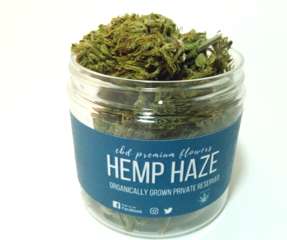 CBD Hemp Haze 7g virágok Hemp Yourself